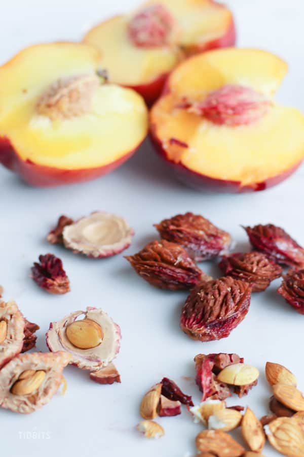 Peaches and peach stones on a white background