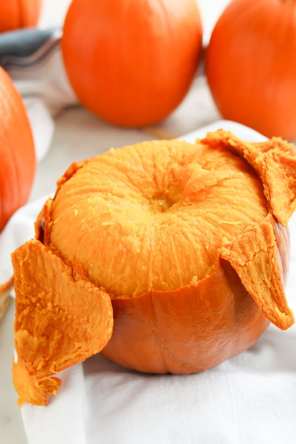 Pressure Cooker Pumpkin Puree made fast and easy