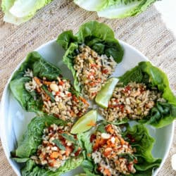 Instant Pot Asian Chicken Lettuce Wraps