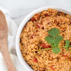 Instant Pot Mexican Brown Rice